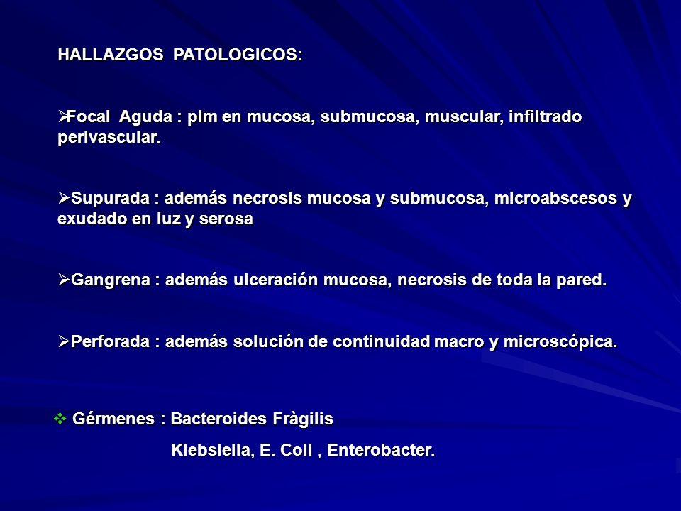 HALLAZGOS PATOLOGICOS: