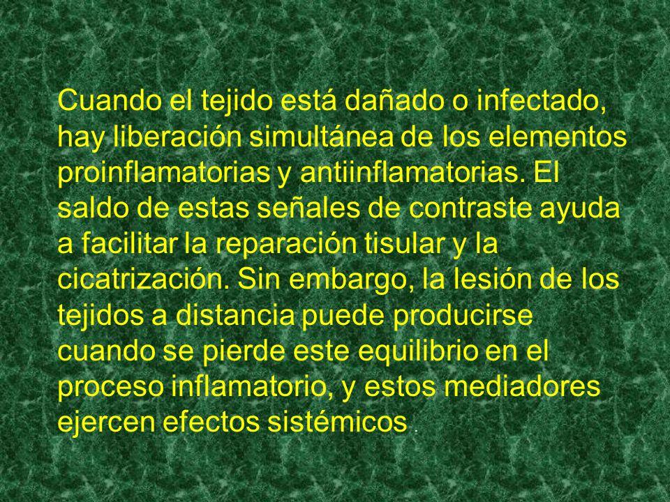 Cuando el tejido está dañado o infectado, hay liberación simultánea de los elementos proinflamatorias y antiinflamatorias.