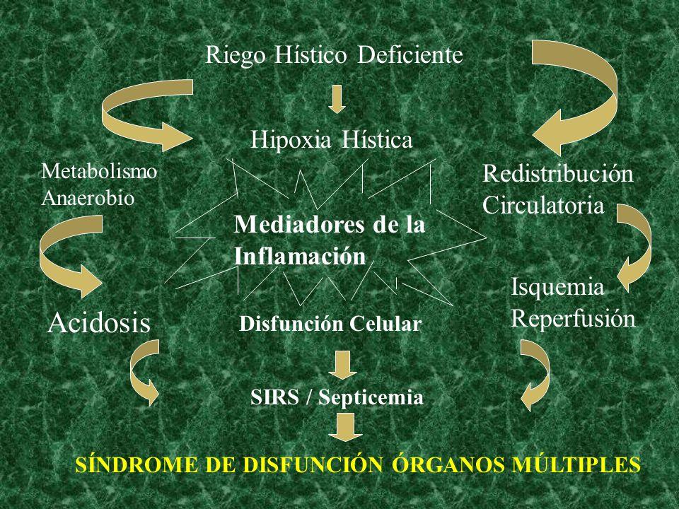 Acidosis Riego Hístico Deficiente Hipoxia Hística
