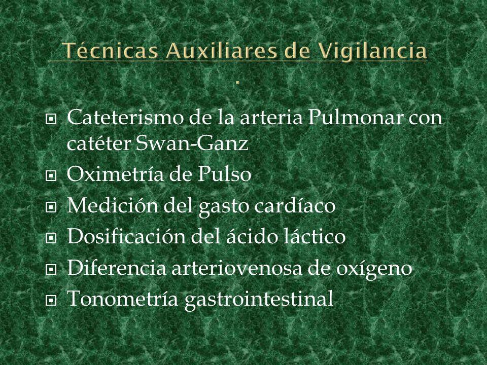 Técnicas Auxiliares de Vigilancia .