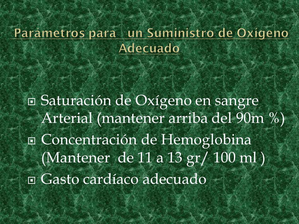Parámetros para un Suministro de Oxígeno Adecuado