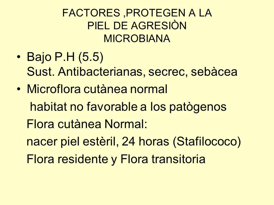 FACTORES ,PROTEGEN A LA PIEL DE AGRESIÒN MICROBIANA