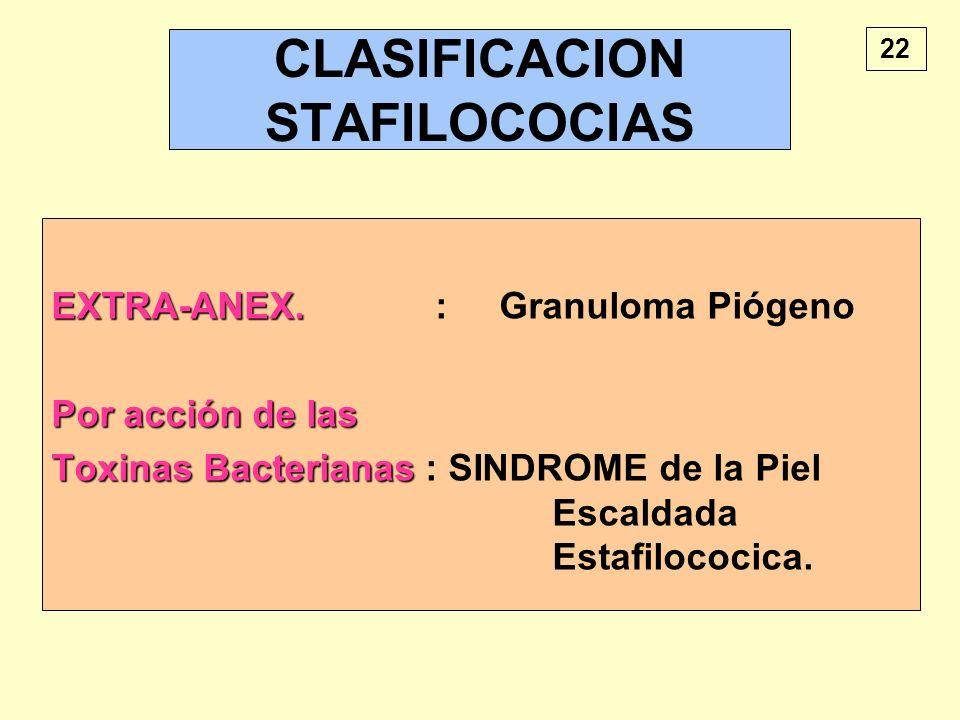 CLASIFICACION STAFILOCOCIAS
