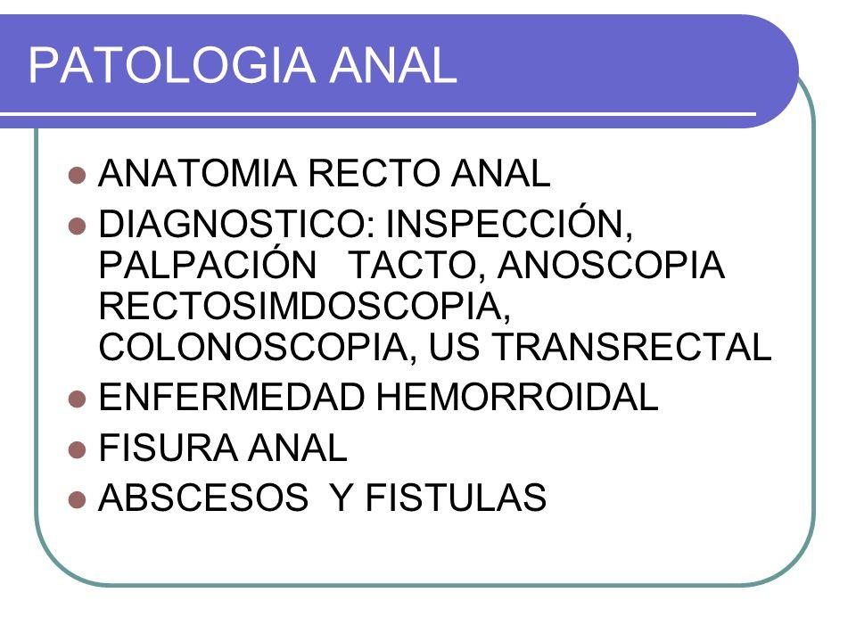 PATOLOGIA ANAL ANATOMIA RECTO ANAL