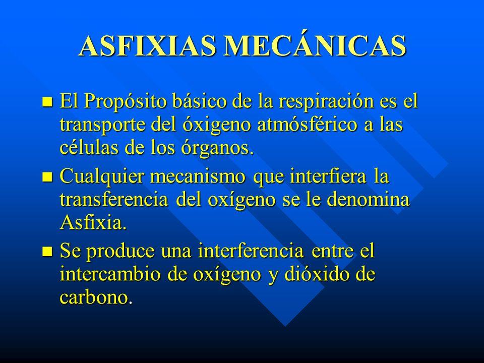 ASFIXIAS MECÁNICAS El Propósito básico de la respiración es el transporte del óxigeno atmósférico a las células de los órganos.