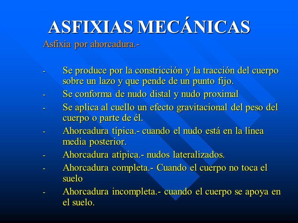 ASFIXIAS MECÁNICAS Asfixia por ahorcadura.-