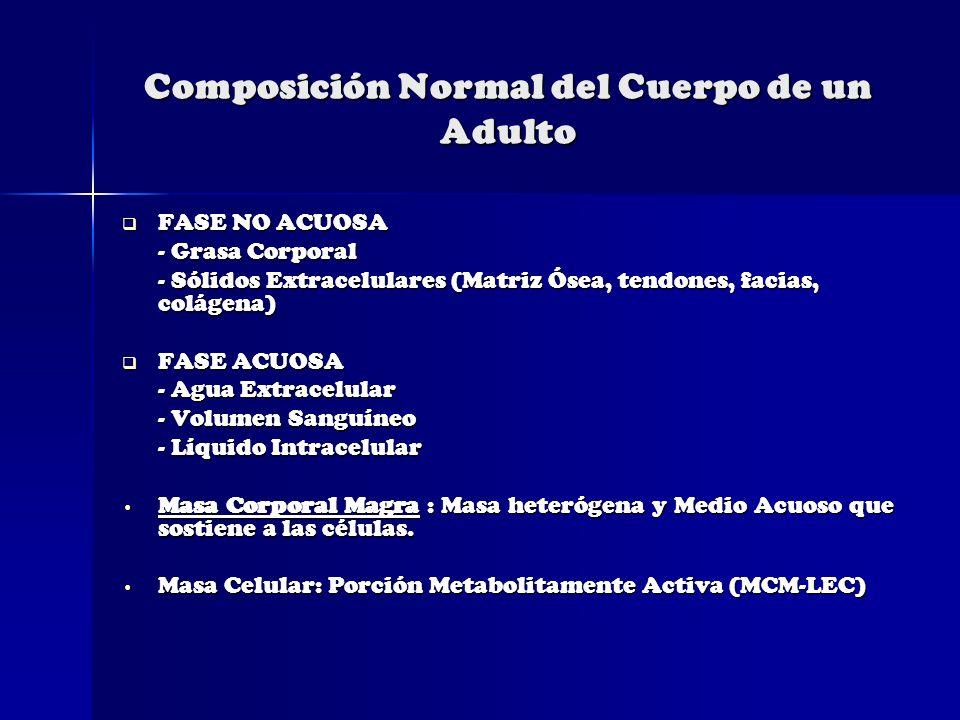 Composición Normal del Cuerpo de un Adulto