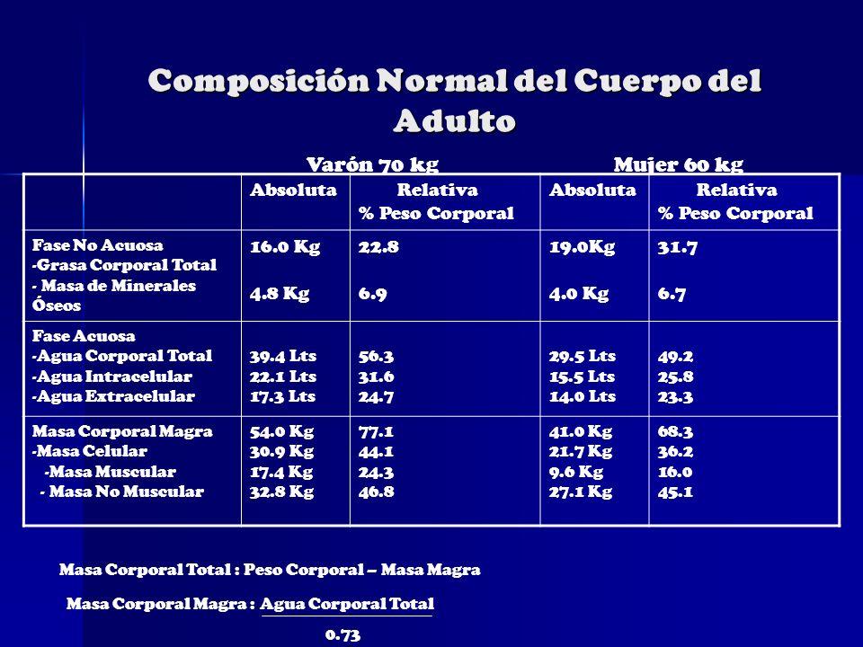 Composición Normal del Cuerpo del Adulto