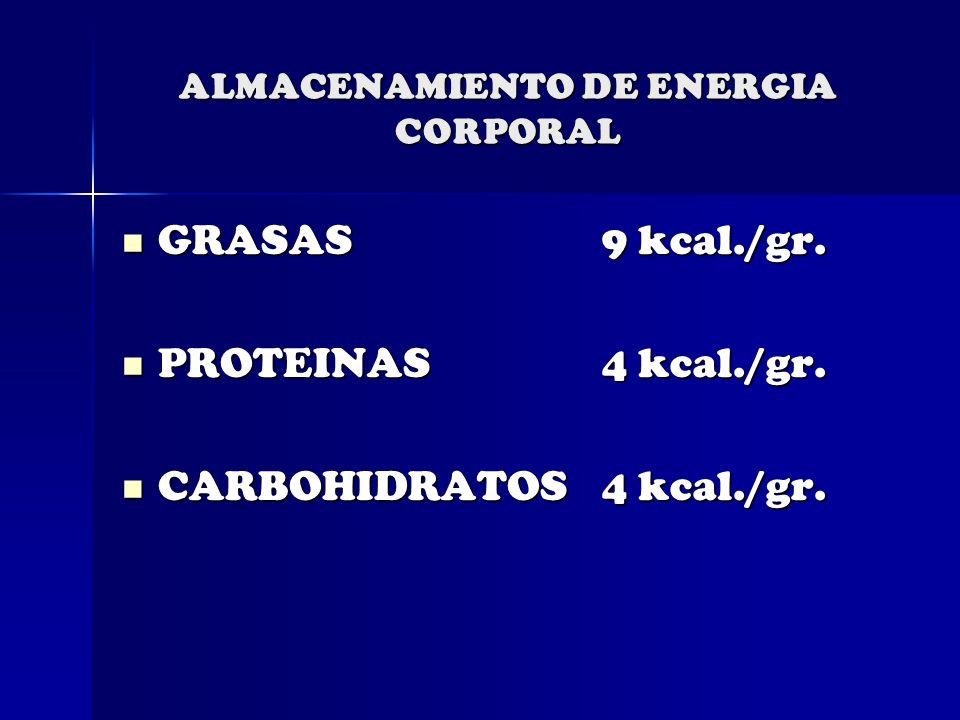 ALMACENAMIENTO DE ENERGIA CORPORAL