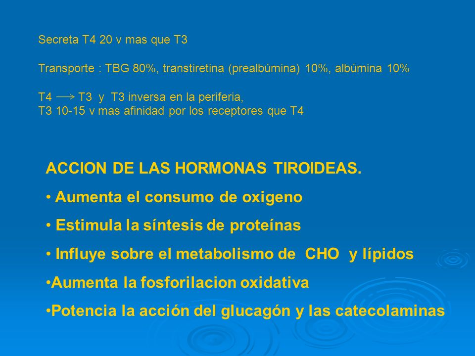 ACCION DE LAS HORMONAS TIROIDEAS. Aumenta el consumo de oxigeno