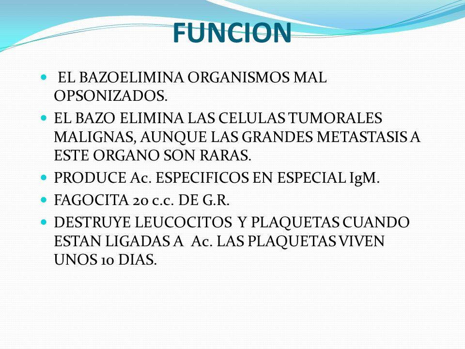 FUNCION EL BAZOELIMINA ORGANISMOS MAL OPSONIZADOS.