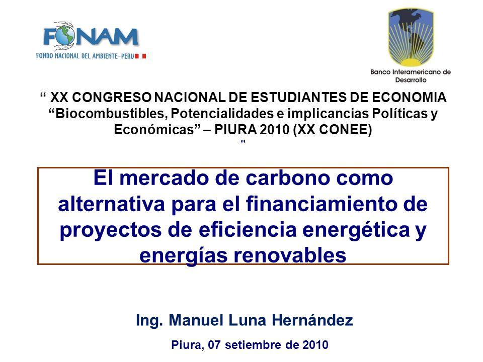 Ing. Manuel Luna Hernández
