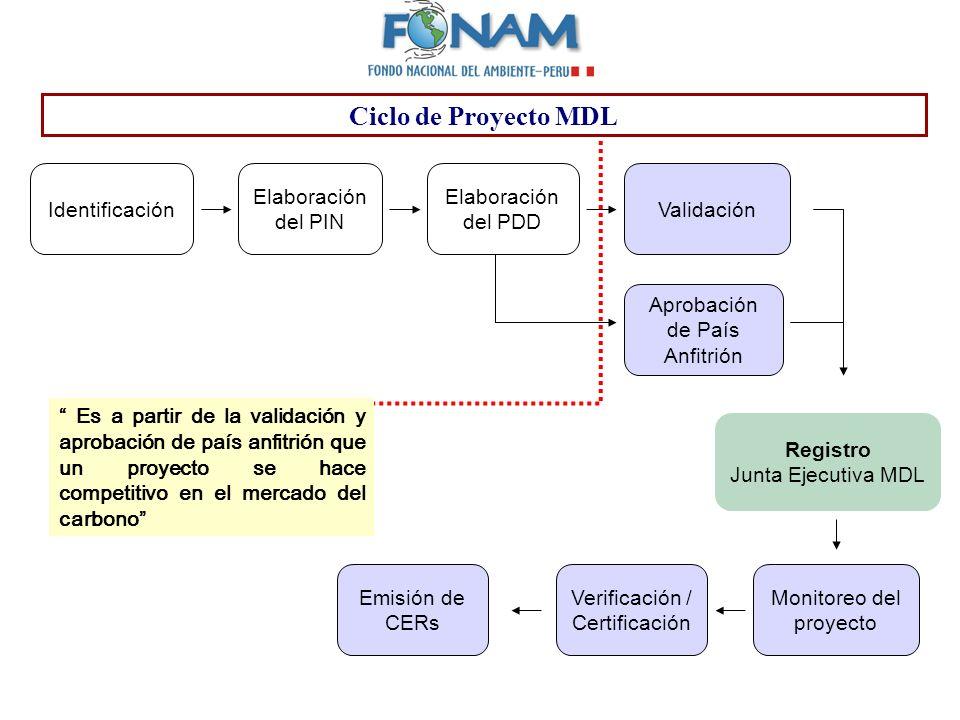Ciclo de Proyecto MDL Identificación Elaboración del PIN