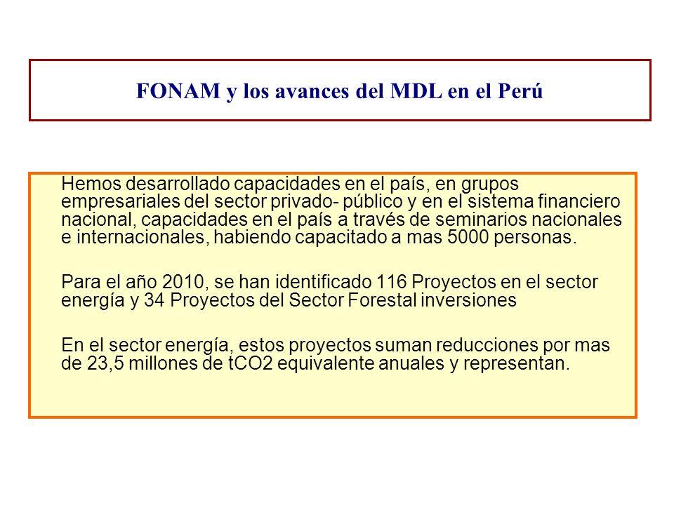 FONAM y los avances del MDL en el Perú