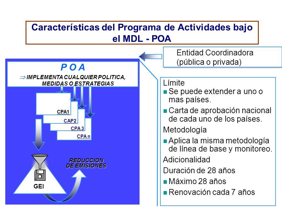 Características del Programa de Actividades bajo el MDL - POA