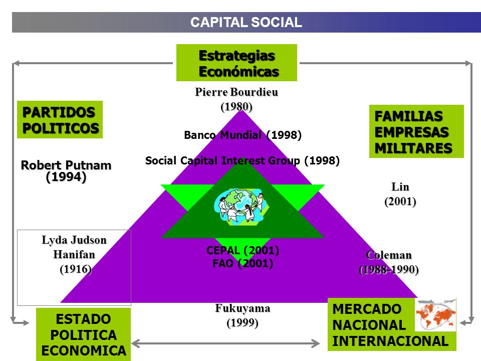 Social Capital Interest Group (1998)
