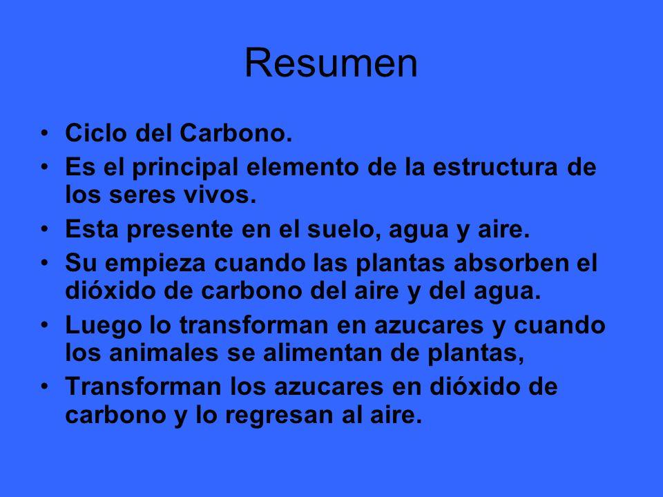 Resumen Ciclo del Carbono.