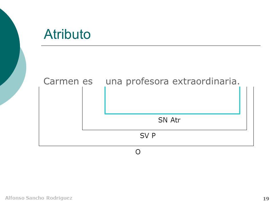 Atributo Carmen es una profesora extraordinaria. SN Atr SV P O 19