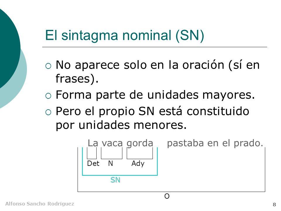 El sintagma nominal (SN)