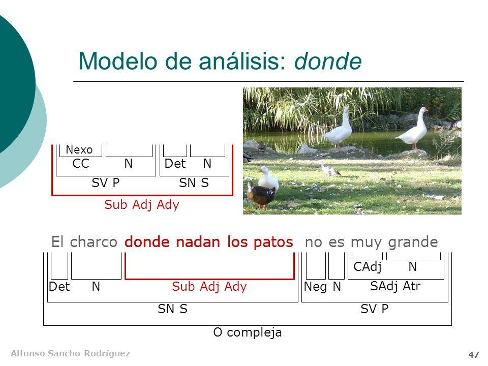 Modelo de análisis: donde
