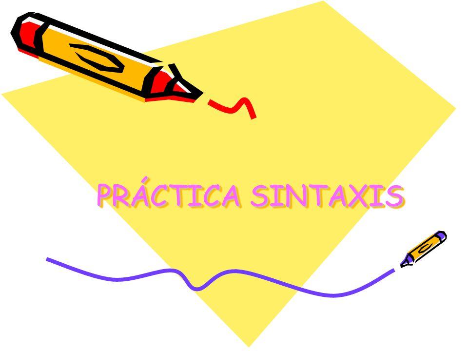 PRÁCTICA SINTAXIS