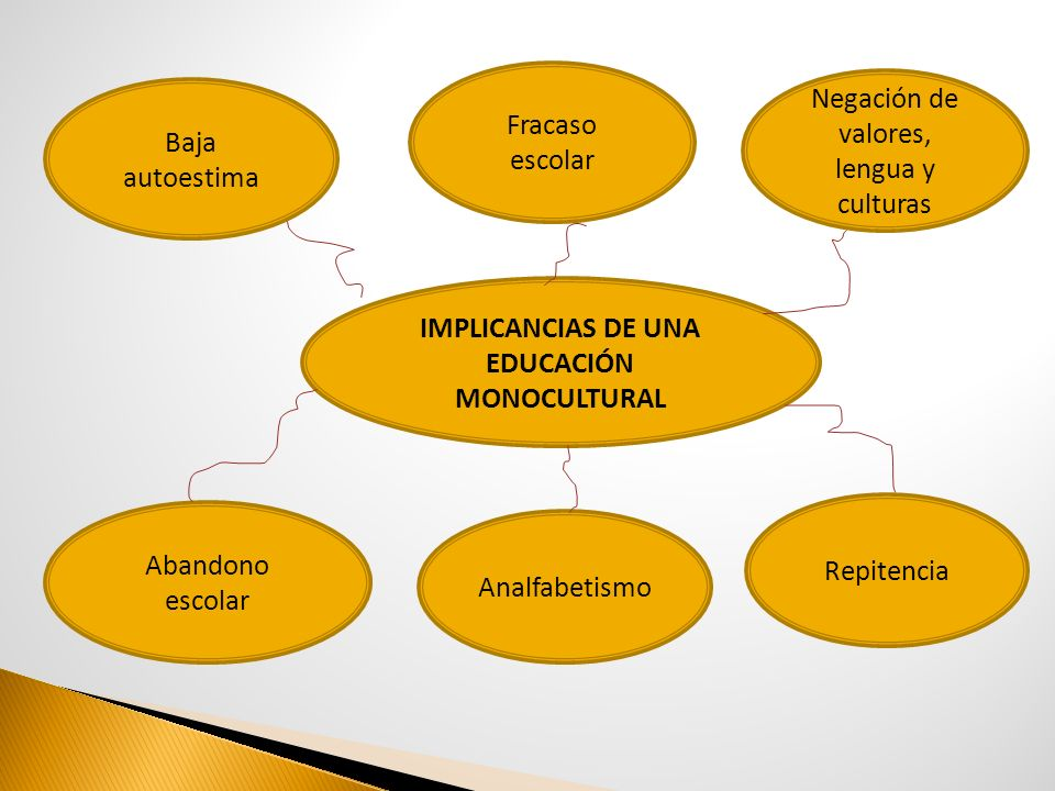 IMPLICANCIAS DE UNA EDUCACIÓN MONOCULTURAL