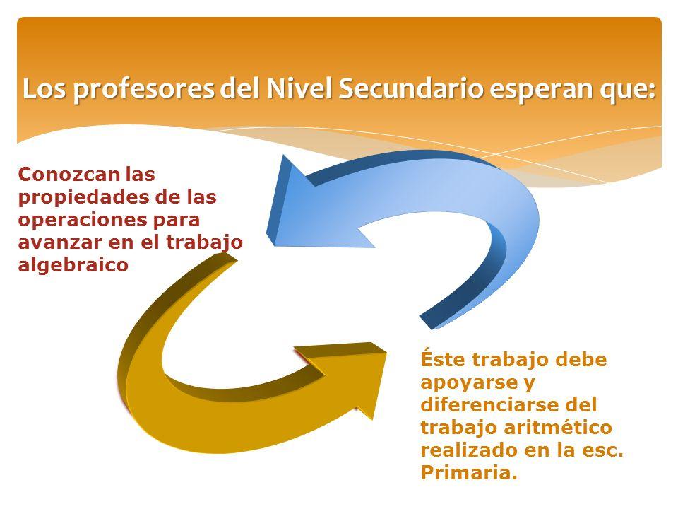 Los profesores del Nivel Secundario esperan que: