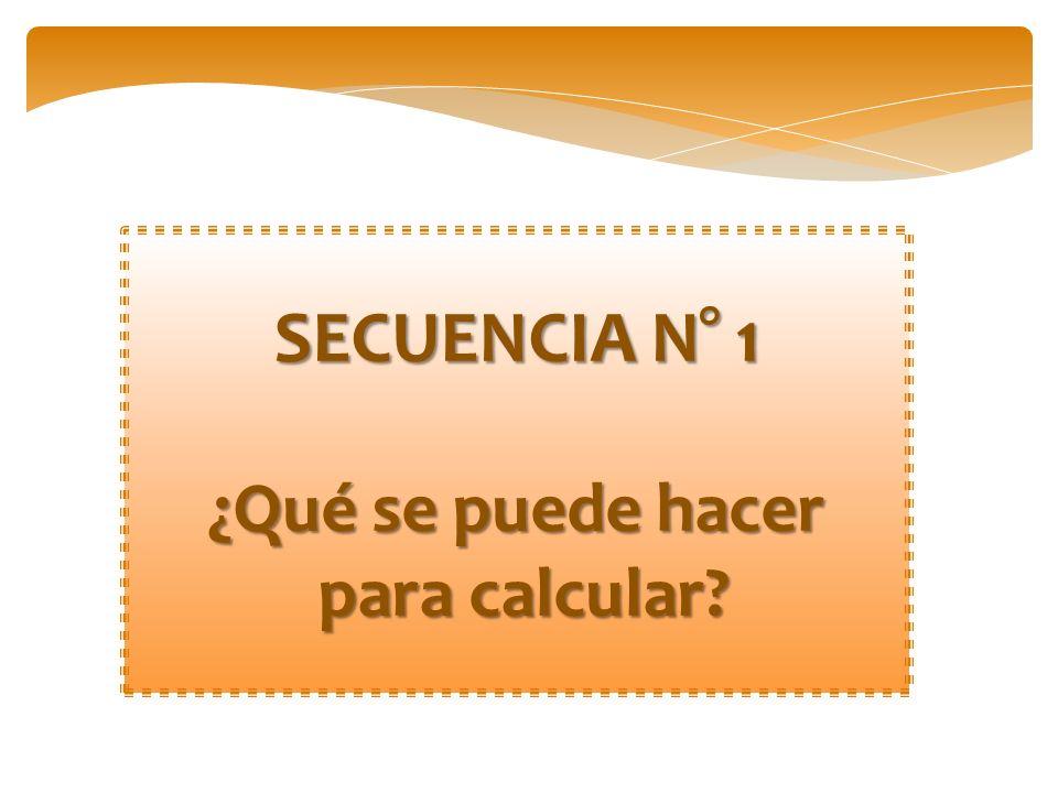 SECUENCIA N° 1 ¿Qué se puede hacer para calcular