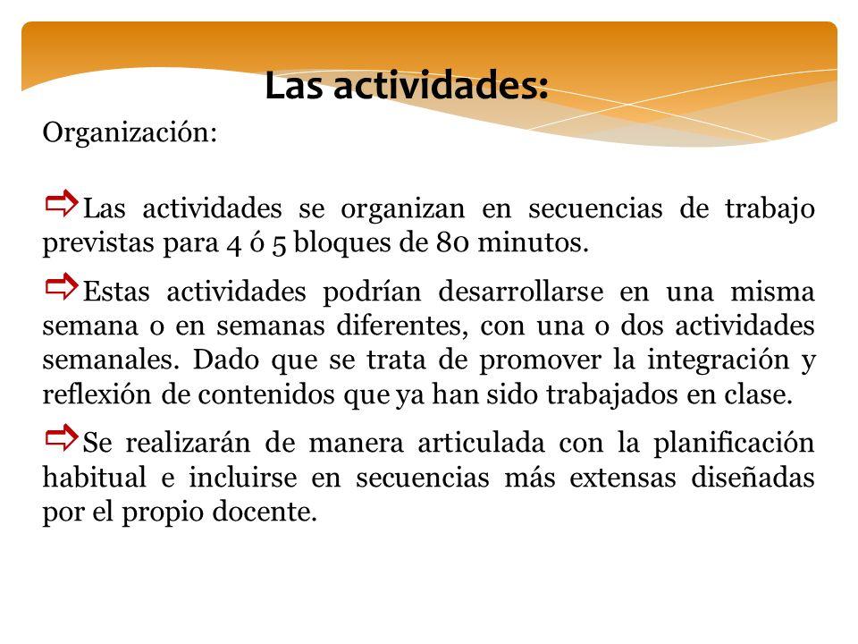 Las actividades: Organización: