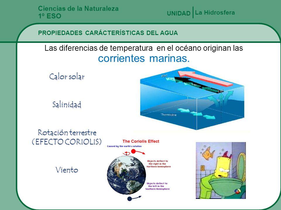Rotación terrestre (EFECTO CORIOLIS)