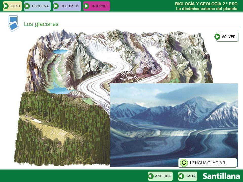 Los glaciares C LENGUA GLACIAR INICIO ESQUEMA RECURSOS INTERNET VOLVER