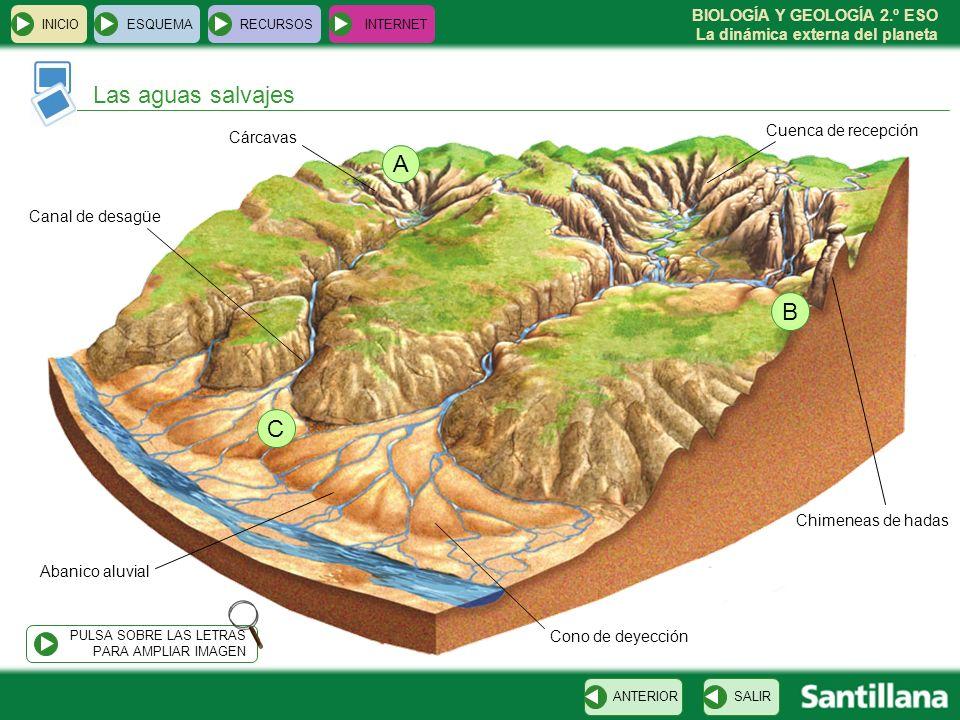Las aguas salvajes A B C Cuenca de recepción Cárcavas Canal de desagüe