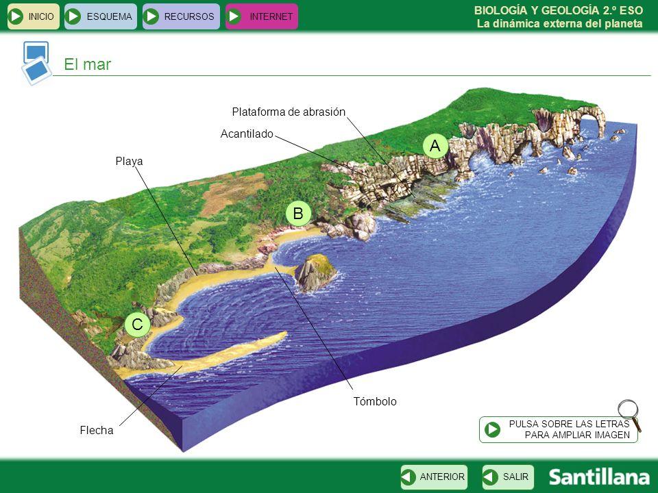 El mar A B C Plataforma de abrasión Acantilado Playa Tómbolo Flecha