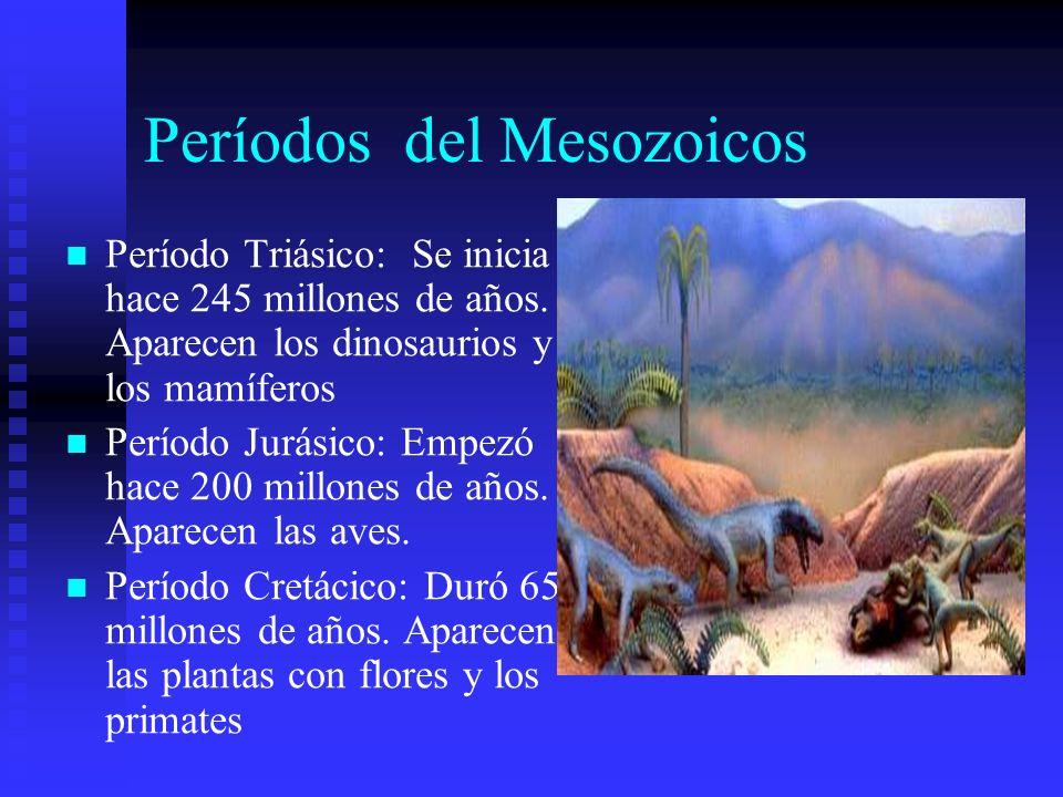 Períodos del Mesozoicos