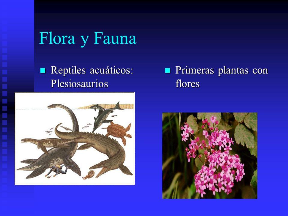 Flora y Fauna Reptiles acuáticos: Plesiosaurios
