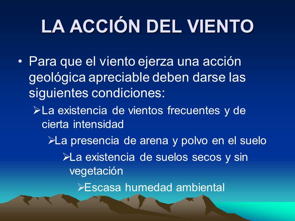 LA ACCIÓN DEL VIENTO Para que el viento ejerza una acción geológica apreciable deben darse las siguientes condiciones: