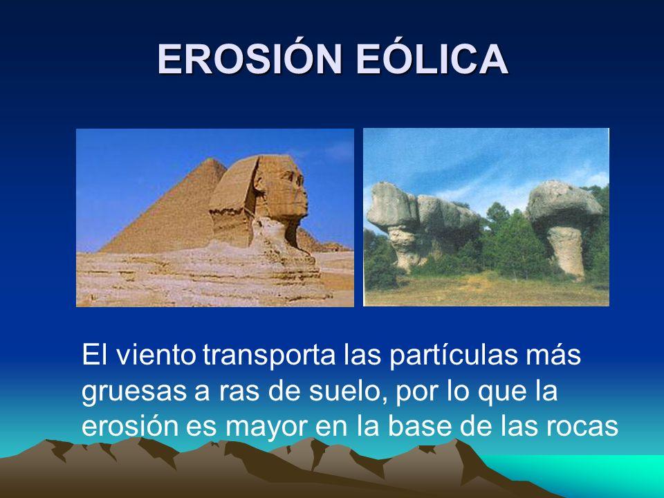 EROSIÓN EÓLICAEl viento transporta las partículas más gruesas a ras de suelo, por lo que la erosión es mayor en la base de las rocas.