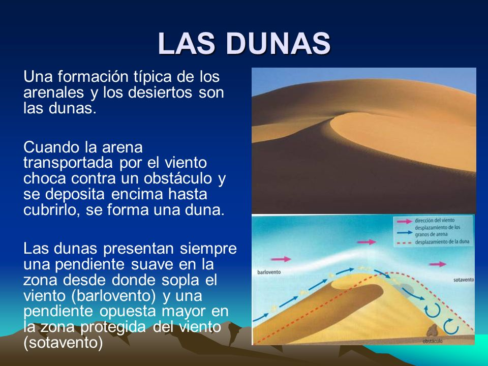 LAS DUNASUna formación típica de los arenales y los desiertos son las dunas.