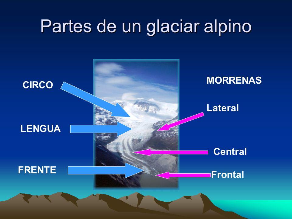 Partes de un glaciar alpino