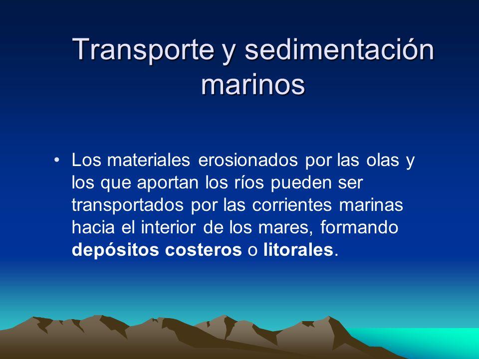 Transporte y sedimentación marinos
