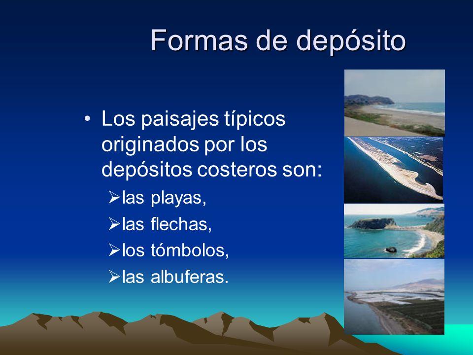 Formas de depósito Los paisajes típicos originados por los depósitos costeros son: las playas, las flechas,