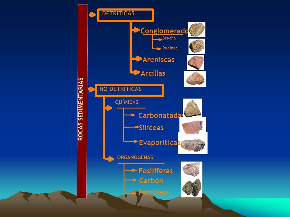 Conglomerados Areniscas Arcillas Carbonatadas Silíceas Evaporíticas