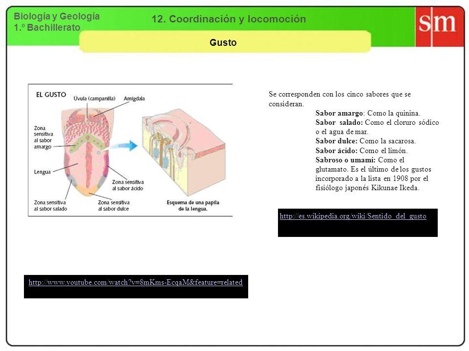 12. Coordinación y locomoción