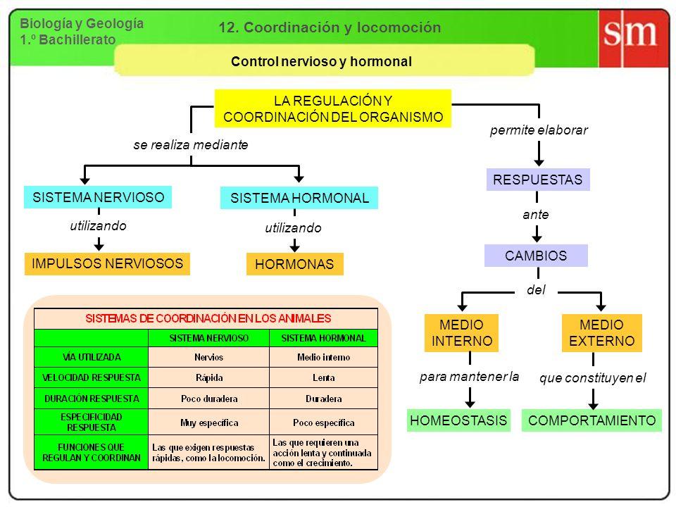 12. Coordinación y locomoción Control nervioso y hormonal