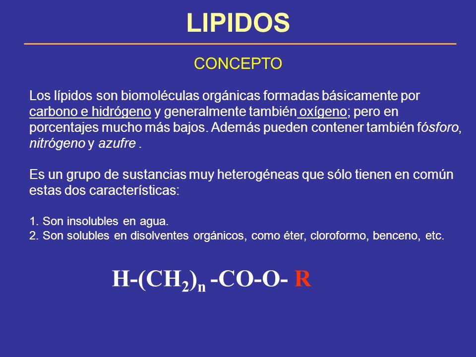 LIPIDOS H-(CH2)n -CO-O- R CONCEPTO