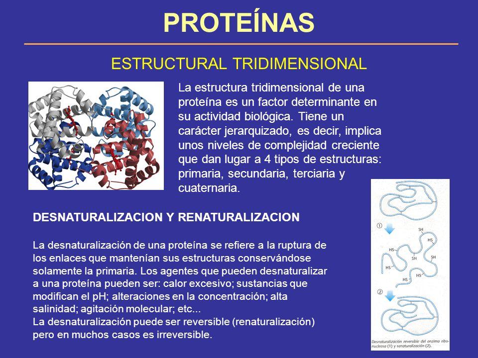 ESTRUCTURAL TRIDIMENSIONAL