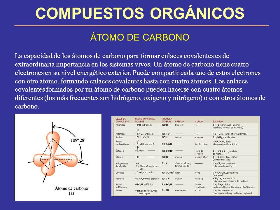 COMPUESTOS ORGÁNICOS ÁTOMO DE CARBONO