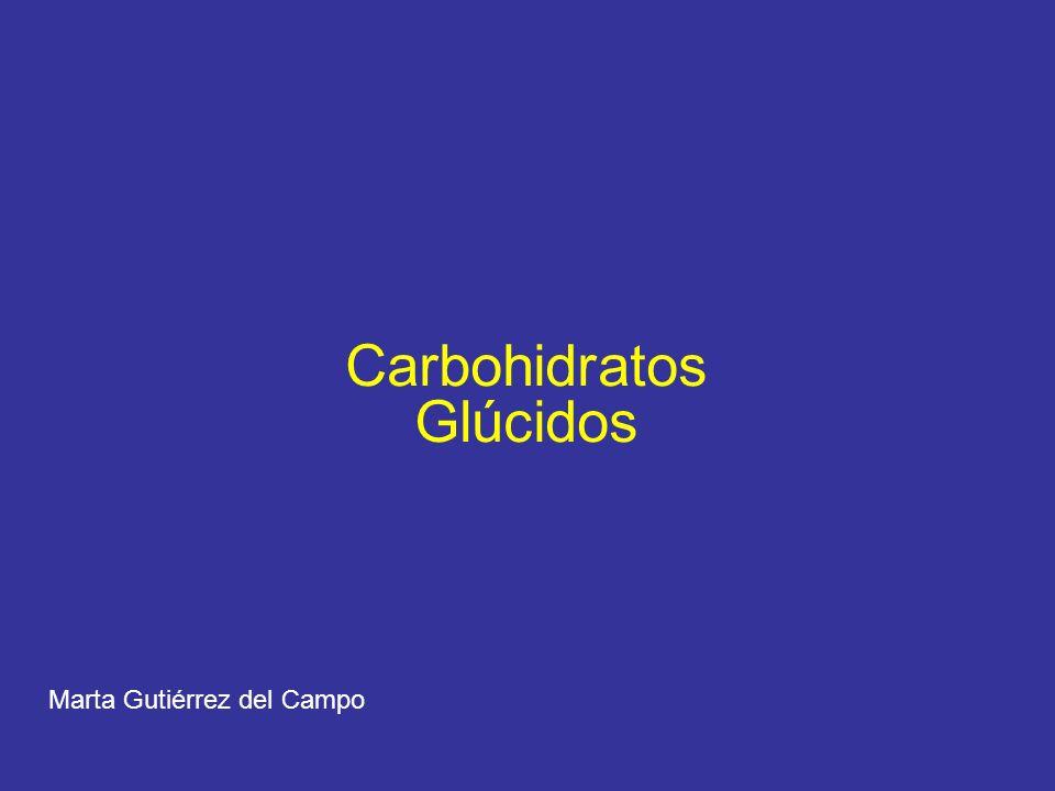 Carbohidratos Glúcidos Marta Gutiérrez del Campo