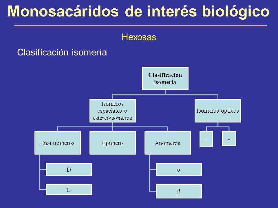 Clasificación isomería