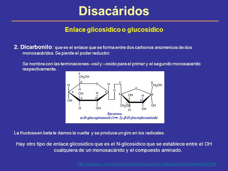 Enlace glicosidico o glucosidico